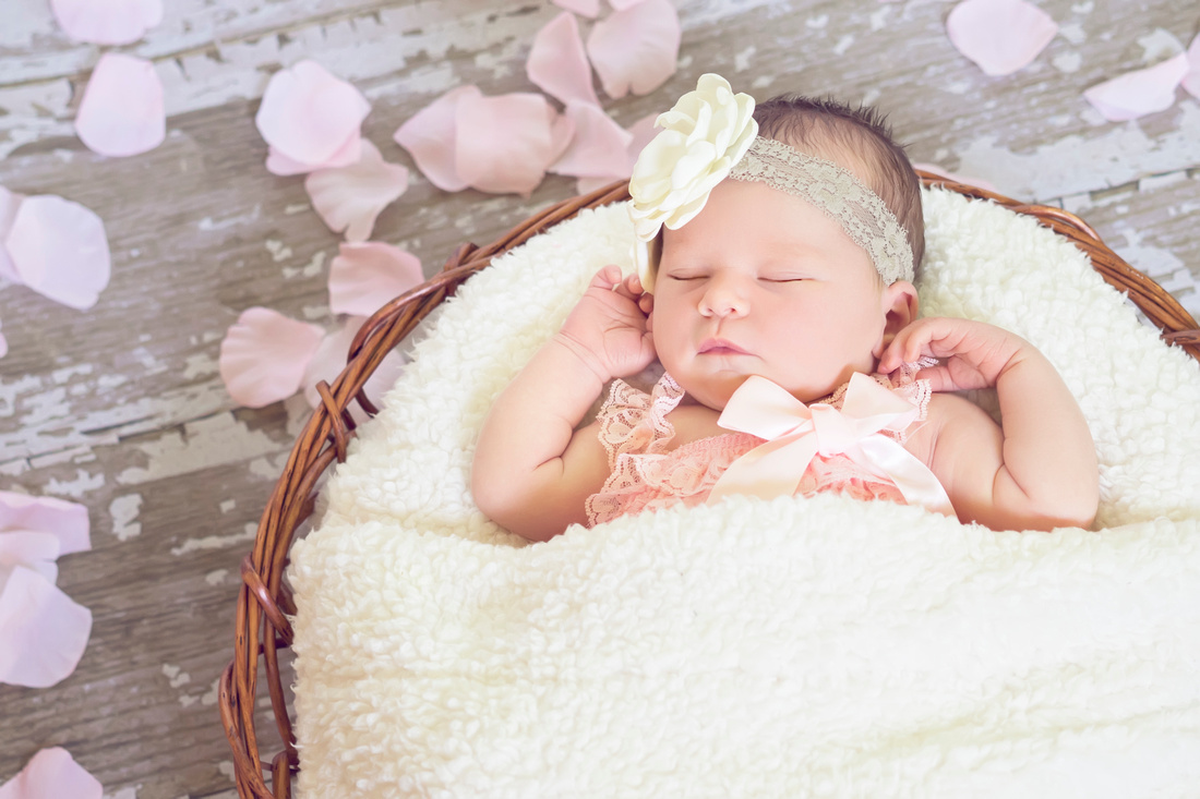 L. Gaines Photography   Newborn baby girl Allison Rose ...